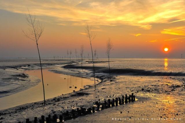 Wattenmeer Wremen Sonnenuntergang Foto@Beate Ullich Die Nordsee-GmbH