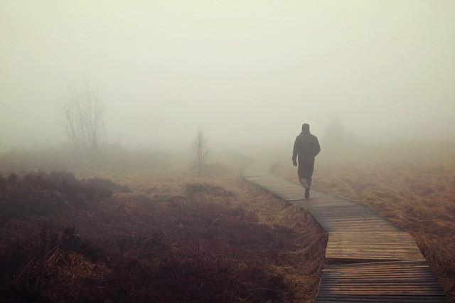 Moor Nebel