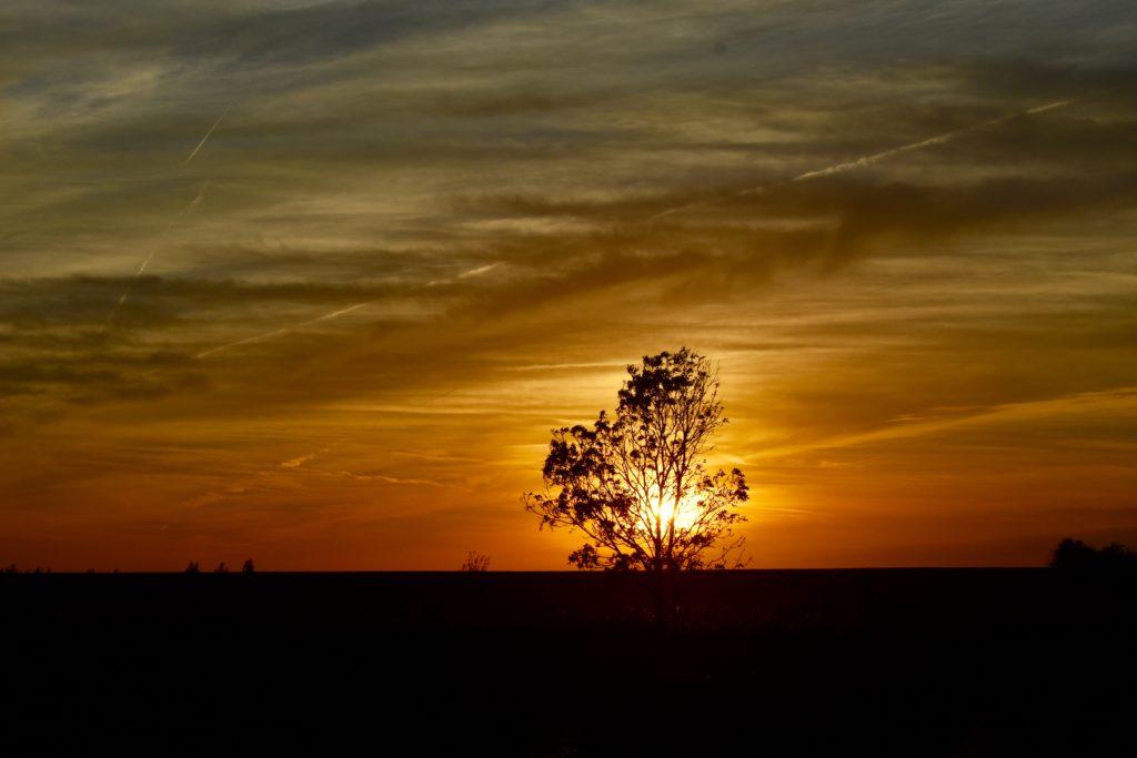 Loquard Krummhörn Sonnenuntergang