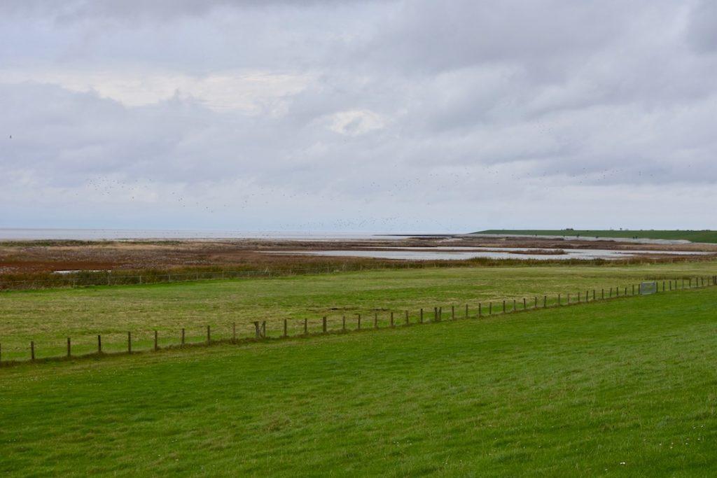 Blick auf das Wattenmeer in Loquard