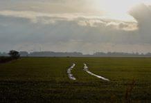 Loquard Krumhörn im Januar