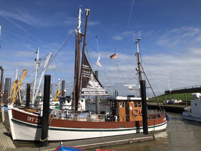 Ditzum Hafen und das Fischhaus in Ditzum am Fähranleger Fähre nach Petkum