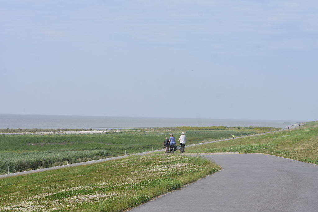 Wunderbare Fahrad Autobahn von Campen nach Hamswehrum an der Krummhörner Nordsee entlang