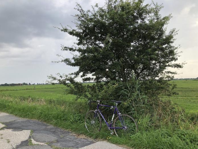 Radtour Krummhörn mit dem Rennrad